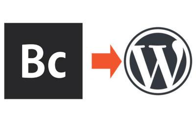 Adobe Business Catalyst Conversion to WordPress